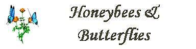 Honeybees*and*Butterflies